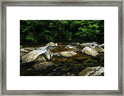 Spring Along Cranberry River Framed Print