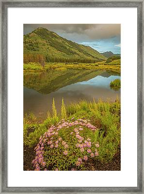 Usa, Colorado, Gunnison National Forest Framed Print