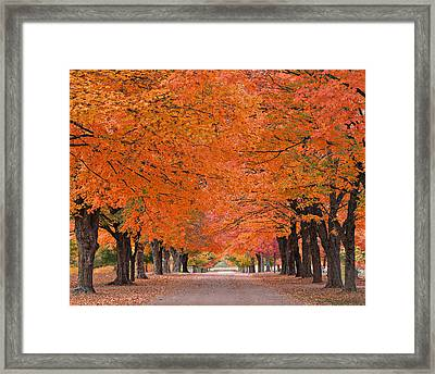 1110-7483 Maplewood Cemetery At Harrision Arkansas Framed Print by Randy Forrester