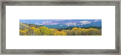 Aspen Trees In A Forest, Boulder Framed Print