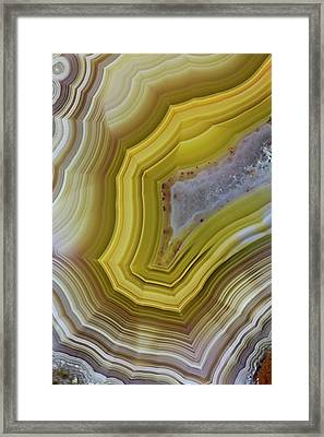 Banded Agate, Sammamish, Washington Framed Print by Darrell Gulin