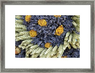 France, Provence-alpes-cote D'azur Framed Print
