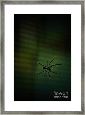 1..2  He's Coming For You Framed Print