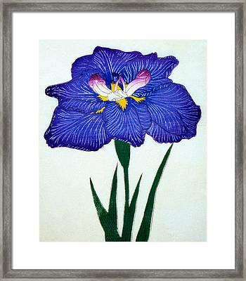 Japanese Flower Framed Print