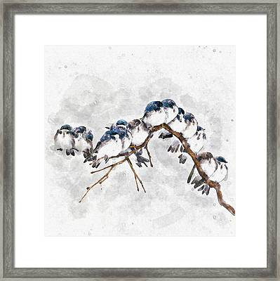 12 On A Twig Framed Print
