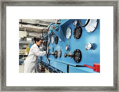 Optical Products Plant Framed Print by Gombert, Sigrid