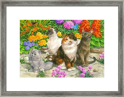 Floral Cats Framed Print by John Francis