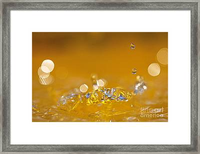Water Drops Framed Print by Odon Czintos