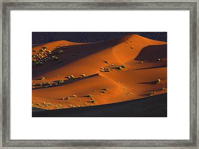 120118p071 Framed Print by Arterra Picture Library