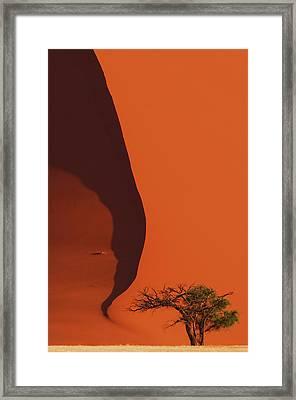 120118p072 Framed Print