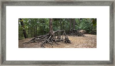 120223p257 Framed Print by Arterra Picture Library