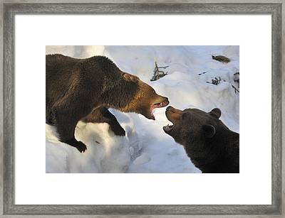 120715p170 Framed Print
