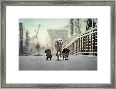 1,2,3.....go! Framed Print