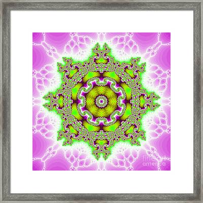 The Kaleidoscope Framed Print by Odon Czintos