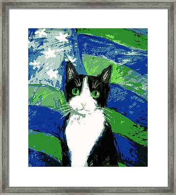 Cat With Stars And Stripes Framed Print