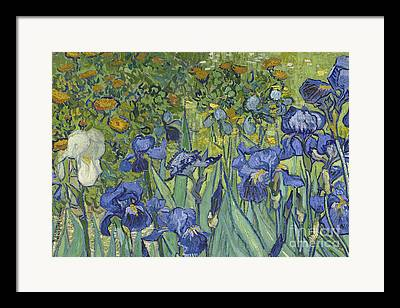 Van Gogh Reproductions Framed Prints