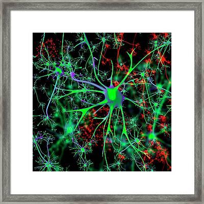 Neuron Framed Print