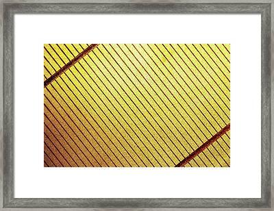 Solar Cell Framed Print