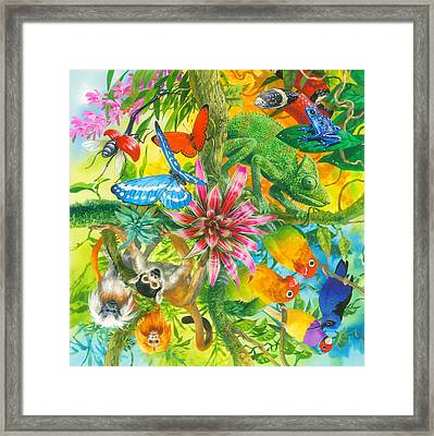 Wonders Of Nature Framed Print by John Francis