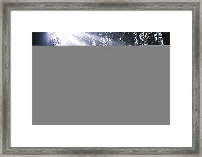 Follow The Leeder - Child And Geese Framed Print by John Bindon