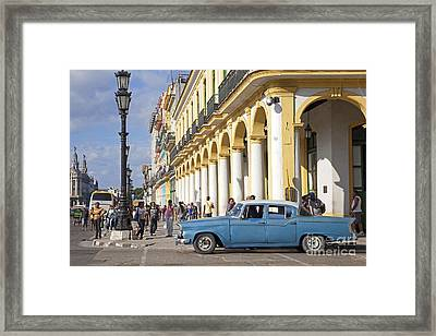 130215p002 Framed Print by Arterra Picture Library