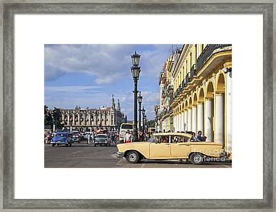 130215p003 Framed Print by Arterra Picture Library