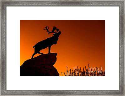130918p141 Framed Print by Arterra Picture Library