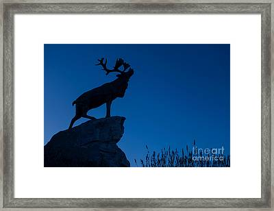 130918p142 Framed Print by Arterra Picture Library