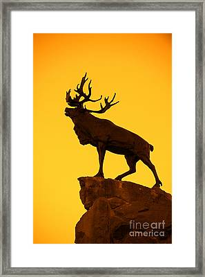 130918p143 Framed Print by Arterra Picture Library