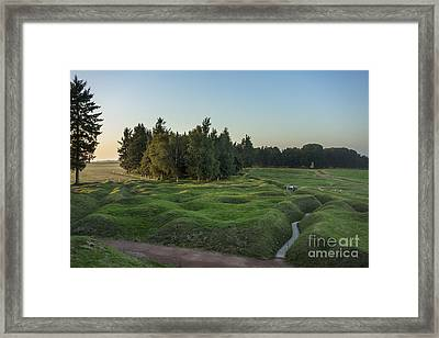 130918p146 Framed Print by Arterra Picture Library