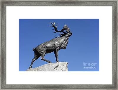 130918p149 Framed Print by Arterra Picture Library