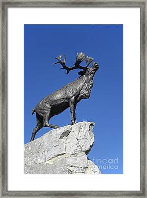 130918p150 Framed Print by Arterra Picture Library