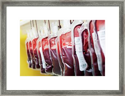 Blood Donation Clinic Framed Print by Thomas Fredberg