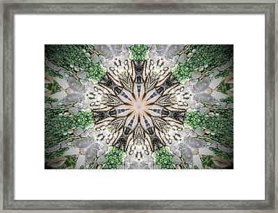 Kaleidoscope Framed Print by Joe Oliver