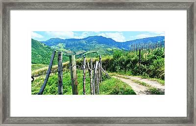 Villalba Verde Framed Print by Mayra  Martinez