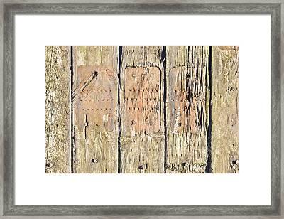 Wood Background Framed Print by Tom Gowanlock