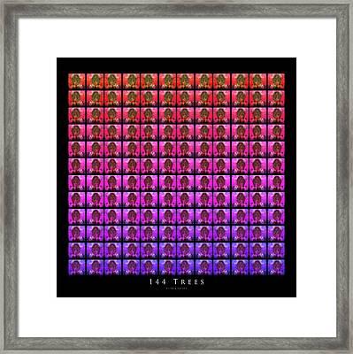 144 Trees Framed Print