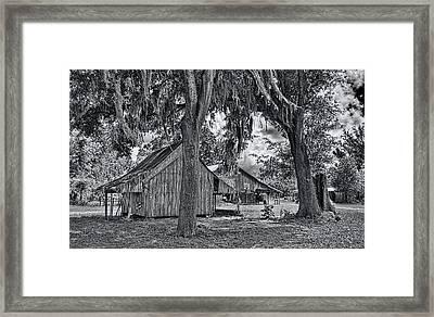 1479-86-231-bw Framed Print