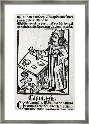 1491 Medieval Apothecary Hortus Sanitatis Framed Print by Paul D Stewart