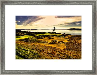 #15 At Chambers Bay Golf Course  Framed Print