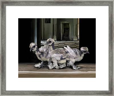 15. Lizard Chicks Framed Print
