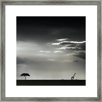 15 Minutes Of Happiness Framed Print