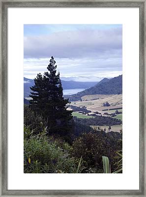 Queen Charlotte Sound Framed Print by Karen Cowled
