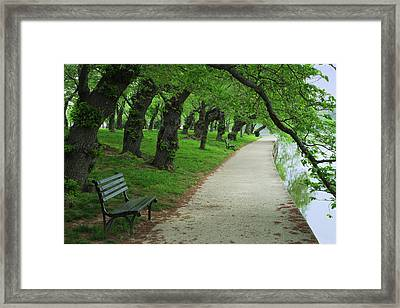 Usa, Washington, D Framed Print