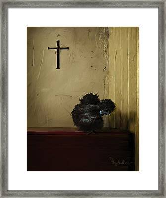 16. Black Silkie Framed Print