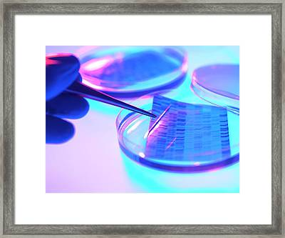 Dna Research Framed Print
