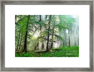 Dream Forest Framed Print by Odon Czintos
