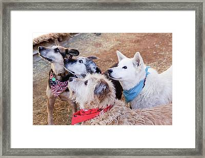 Santa Fe, New Mexico, United States Framed Print