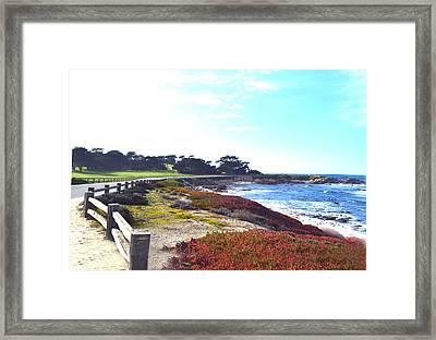 17 Mile Drive Shore Line II Framed Print