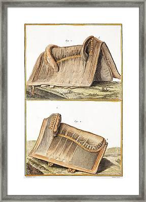 1750 Galapagos Tortoise Saddle Likeness Framed Print